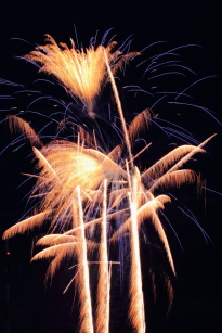 Fireworks Palm Tree Style