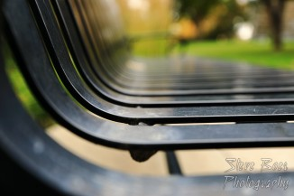 Park bench with shallow depth of field (dof)